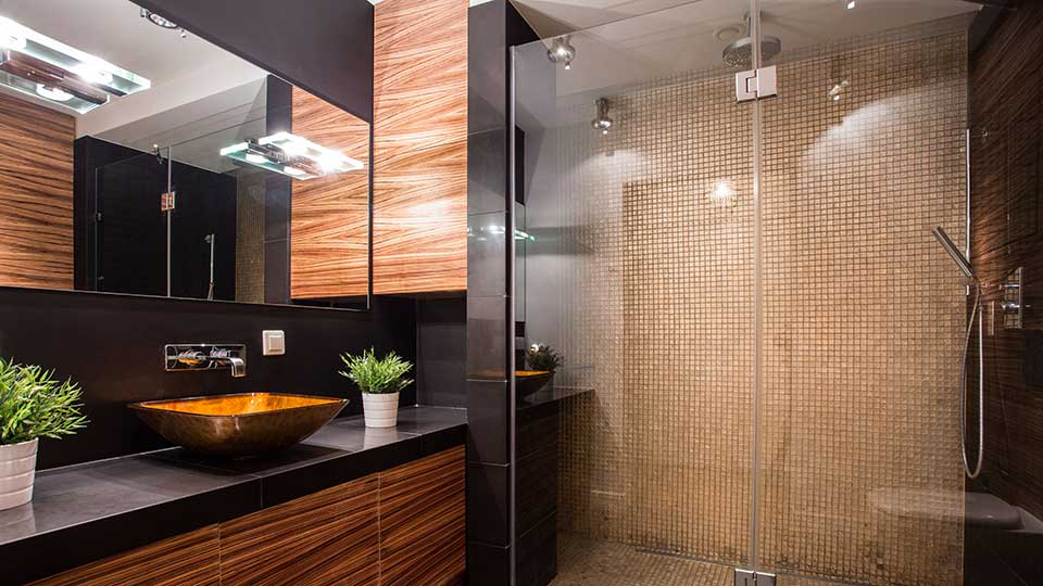 Frameless Glass Shower Enclosure and Mirror